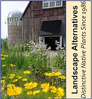 Landscape Alternatives - Distinctive Native Plants since 1986!