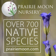 Shop for native seeds and plants at PrairieMoon.com!